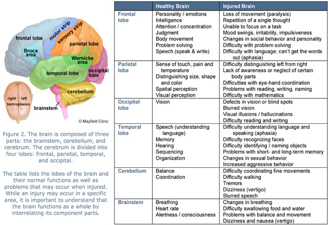 Symptoms-of-Brain-injuries-c